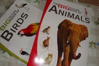 Big Book of Animals and Birds